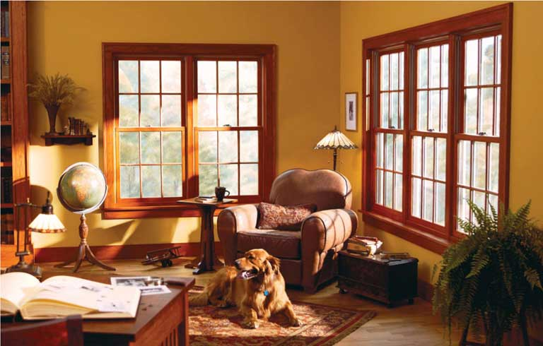 double hung windows albuquerque