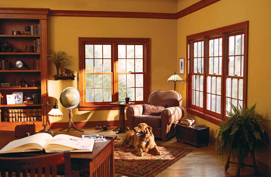 Windows Dreamstyle Remodeling